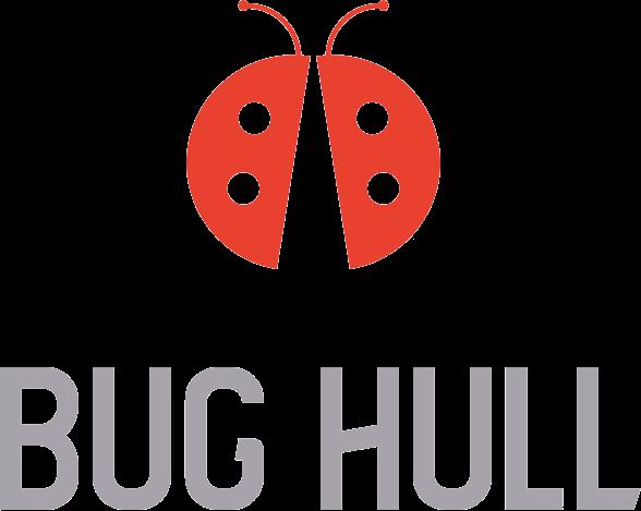BUG HULL, retreatmigraine